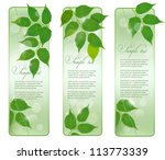 three nature banners with green ... | Shutterstock .eps vector #113773339