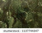 malachite deep green natural... | Shutterstock . vector #1137744347
