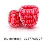 raspberry berries. ripe red... | Shutterstock .eps vector #1137760127