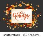 nature fall template | Shutterstock .eps vector #1137766391