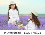 young woman and girl are in the ...   Shutterstock . vector #1137775121