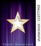 vector golden star with... | Shutterstock .eps vector #113777905