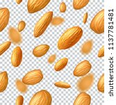seamless vector pattern with... | Shutterstock .eps vector #1137781481