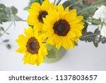 summer bouquet with sunflowers... | Shutterstock . vector #1137803657