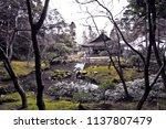 japanese architecture garden | Shutterstock . vector #1137807479