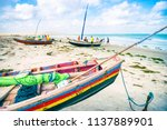 traditional colorful brazilian... | Shutterstock . vector #1137889901