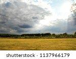 a relaxing and beautiful summer ...   Shutterstock . vector #1137966179