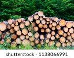 natural wooden background  ...   Shutterstock . vector #1138066991