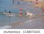 blagoveshchenskaya  russia  ... | Shutterstock . vector #1138072631