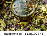 cup of tea lavender provence... | Shutterstock . vector #1138102871