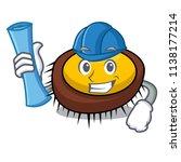 architect sea urchin character... | Shutterstock .eps vector #1138177214