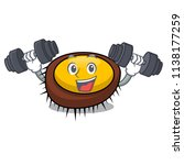 fitness sea urchin character... | Shutterstock .eps vector #1138177259