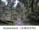 rocky steps in the forest with... | Shutterstock . vector #1138215701