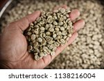 hand holding dried coffee beans ... | Shutterstock . vector #1138216004
