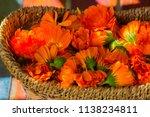 marigold  calendula officinalis  | Shutterstock . vector #1138234811