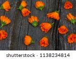 bouquet of calendula  calendula ... | Shutterstock . vector #1138234814