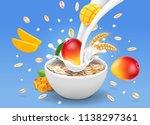 instant oatmeal mango... | Shutterstock .eps vector #1138297361