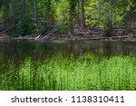 boubin lake. reflection of lush ...   Shutterstock . vector #1138310411