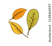autumn leaf set element | Shutterstock .eps vector #1138364957