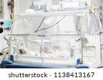 sliven  bulgaria   january 21 ...   Shutterstock . vector #1138413167