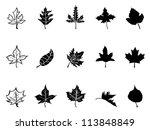 black maple leaves silhouette | Shutterstock .eps vector #113848849