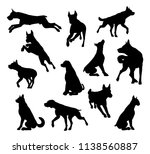 a set of detailed animal... | Shutterstock .eps vector #1138560887