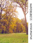 beautiful autumn park strewn...   Shutterstock . vector #1138582694