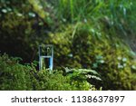 clear water in a clear glass... | Shutterstock . vector #1138637897