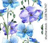 blue flax flower. floral... | Shutterstock . vector #1138766747