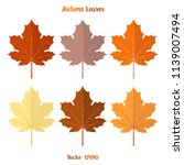 autumn leaves in different... | Shutterstock .eps vector #1139007494