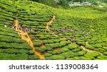 beautiful landscape view of... | Shutterstock . vector #1139008364