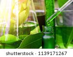 scientist with natural drug... | Shutterstock . vector #1139171267