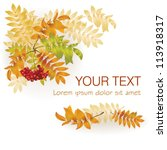 autumn background with yellow... | Shutterstock .eps vector #113918317