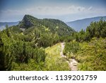 summer hike in the slovakia... | Shutterstock . vector #1139201759