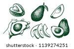 vector hand drawn avocado set.... | Shutterstock .eps vector #1139274251