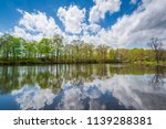 the duck pond at edgewood park... | Shutterstock . vector #1139288381