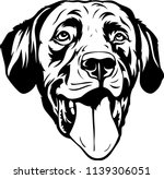labrador retriever lab dog... | Shutterstock .eps vector #1139306051