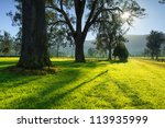 Australian Countryside In The...