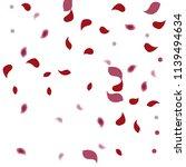 abstract flower petals confetti ... | Shutterstock .eps vector #1139494634