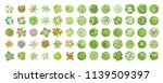 vector set. trees and flowers.... | Shutterstock .eps vector #1139509397