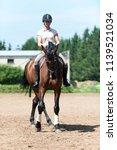teenage girl equestrian riding... | Shutterstock . vector #1139521034