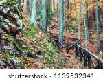 hiking path with railing in the ... | Shutterstock . vector #1139532341