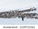 nenets reindeer mans catches...   Shutterstock . vector #1139712161