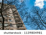the trees on background of the... | Shutterstock . vector #1139804981