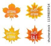 vector autumn season banner.... | Shutterstock .eps vector #1139805914