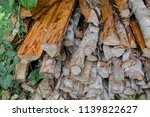 pile of firewood backgrounds... | Shutterstock . vector #1139822627