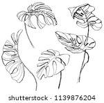 vector monstera leaves... | Shutterstock .eps vector #1139876204