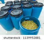 olives barrel in a factory. | Shutterstock . vector #1139952881