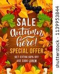 autumn sale special offer... | Shutterstock .eps vector #1139953844