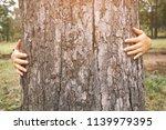 happy young woman hug a big... | Shutterstock . vector #1139979395